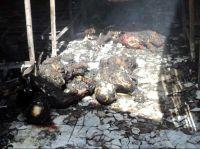20120217224635-muertos-carcel-honduras-160.jpg