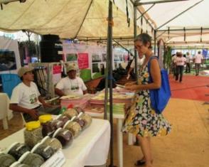 Cita dominical con tecnologías agropecuarias sostenibles en Nicaragua