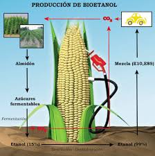 Biocombustibles de maíz emiten más gases de efecto invernadero, según estudio