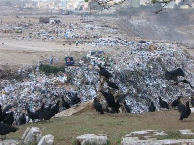 Guatemala: Pérdidas humanas sin reparaciones en basurero de la Zona 3
