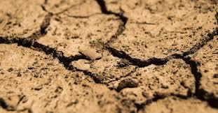 Reclaman voluntad política ante impacto de la sequía en Centroamérica