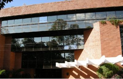 Caficultores de Guatemala buscan contratos directos con compradores