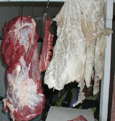 Alertas sanitarias frenan comercio de carnes entre Guatemala y Honduras